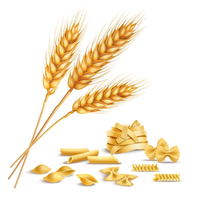 Realistic wheat spikelets and pasta Free Vector
