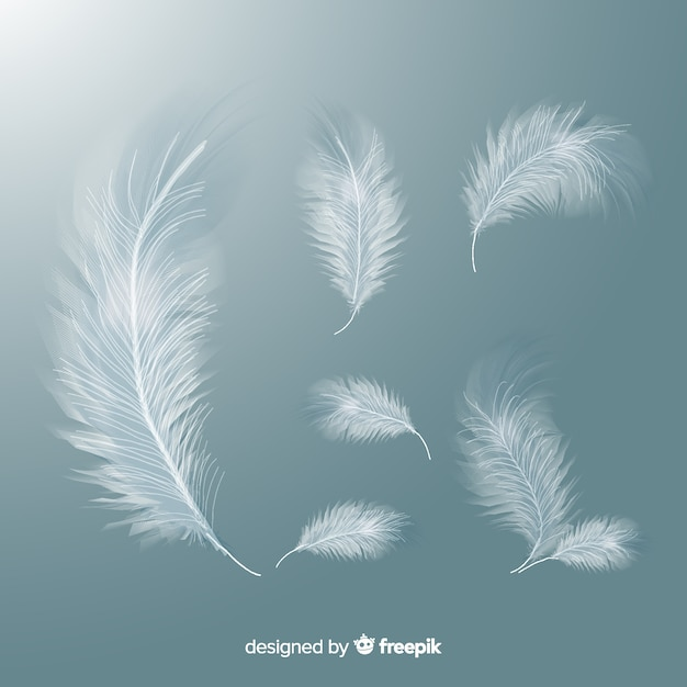 Realistic white feather set Free Vector