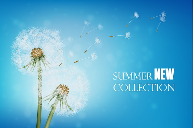 Realistic wither dandelion with flying seeds Free Vector