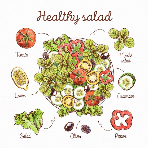Recipe for green healthy salad Free Vector