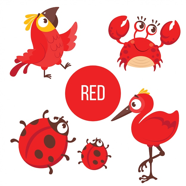 Red animals: parrot, crab, lady bug, bird. Premium Vector