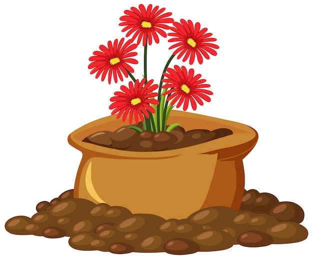 Red flowers in brown bag on white background Premium Vector