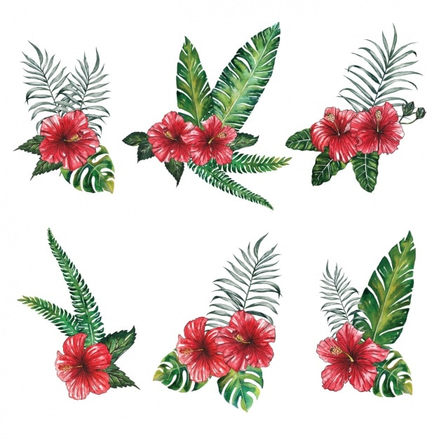 Red flowers design Free Vector