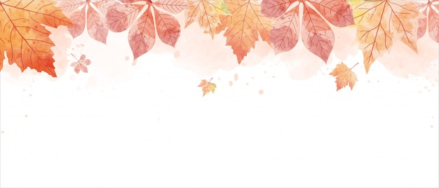 Red leaves in autumn background Premium Vector