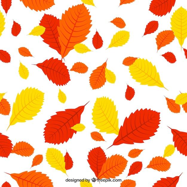 Красный, оранжевый и желтые листья лаковой Бесплатные векторы