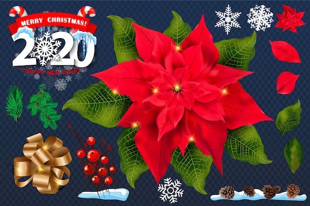 Christmas Flowers 2020 Red poinsettia flowers set. 2020 christmas symbols . | Premium Vector