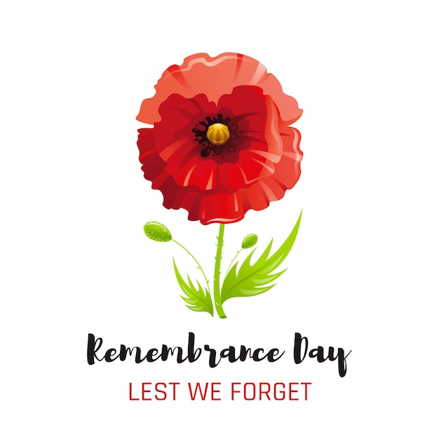 Red Poppy Flower Symbol Remembrance Day Poster Memory Banner