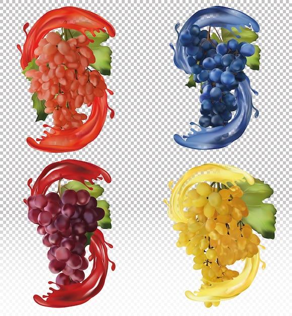 Красный, розовый и синий виноград. винный виноград, столовый виноград с всплеск сока. реалистичные фрукты. векторная иллюстрация Premium векторы