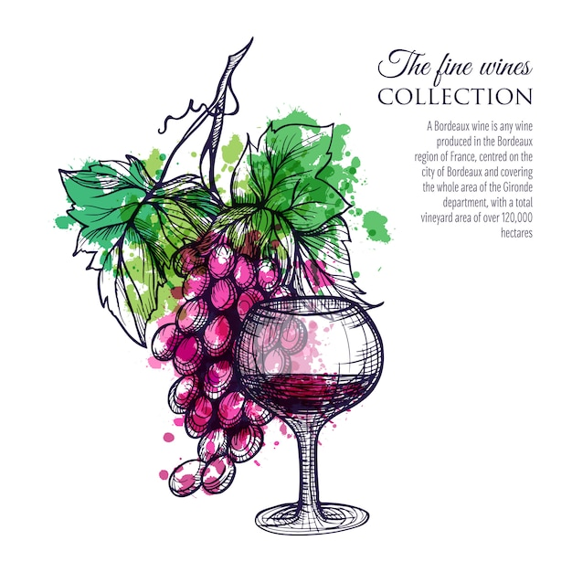 Red wine with grape Free Vector