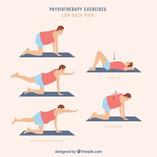 Rehabilitation exercise pack Free Vector