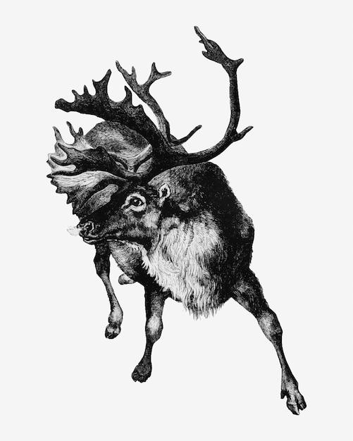 Reindeer vintage style Free Vector