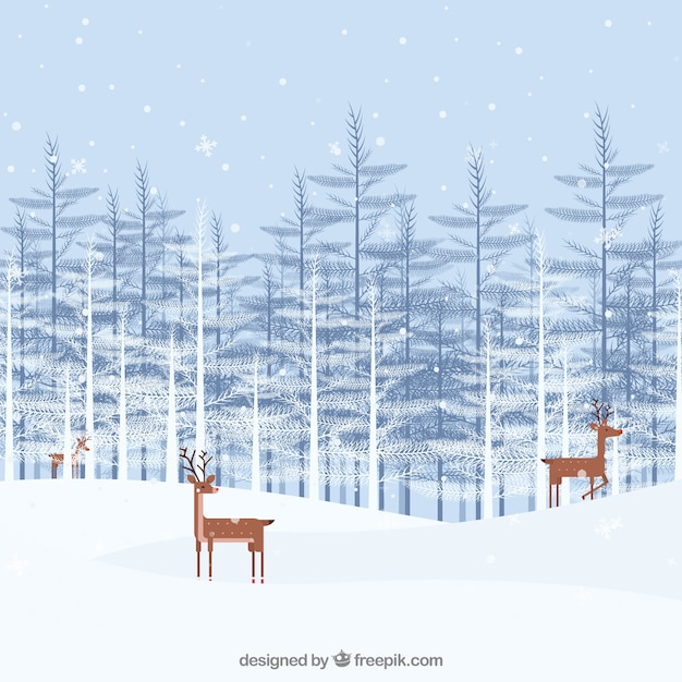 Reindeers in a forest