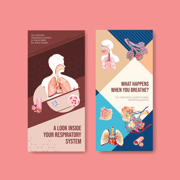 Respiratory flyer design with human anatomy of lung and healthy care Free Vector