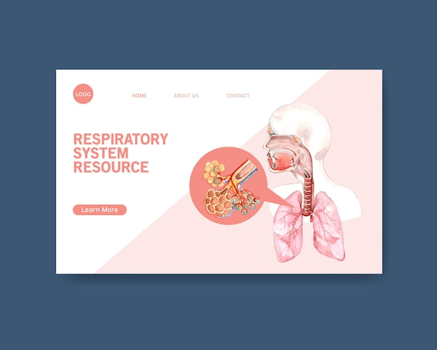 Respiratory system design for website template with human anatomy of lung Free Vector