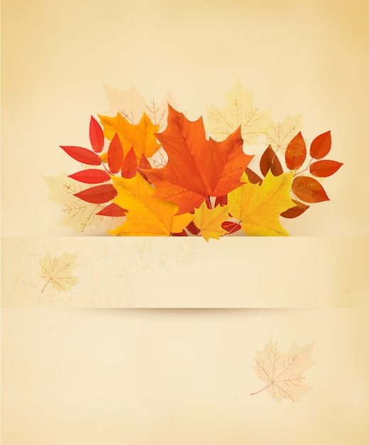 Retro autumn background with colorful leaves. Premium Vector