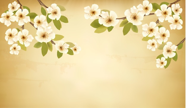 Retro background with blossoming tree brunch and white flowers. Premium Vector