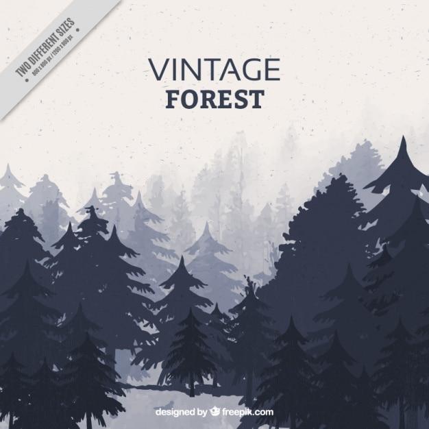 Retro landscape with different types of trees Premium Vector