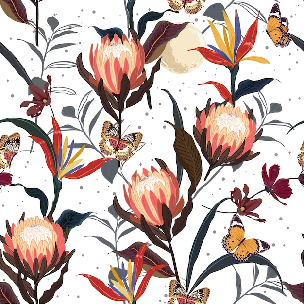 Retro protea flowers  botanical seamless pattern vector Premium Vector