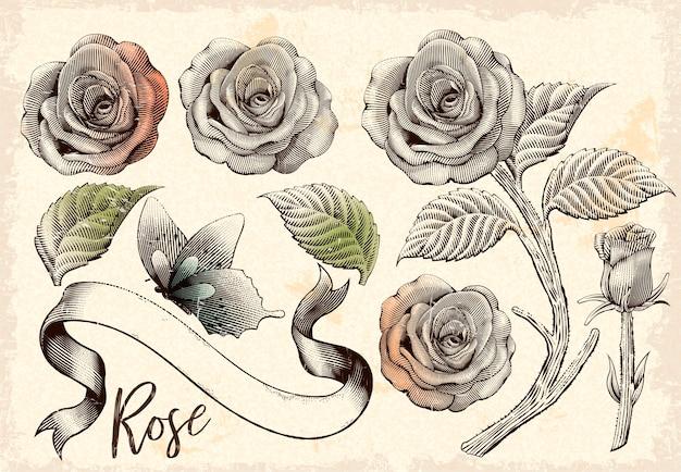 복고풍 장미 장식 요소 집합, 꽃, 나비와 베이지 색 배경에 음영 스타일 에칭 리본 프리미엄 벡터