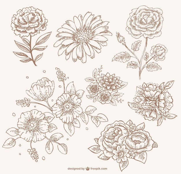 Line Art Flowers Vector : Retro sepia floral line art vector free download