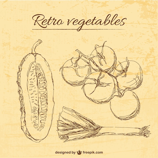 retro vegetables illustration template vector free download