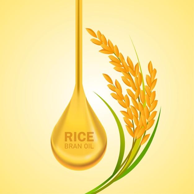Rice great quality design concept   . Premium Vector