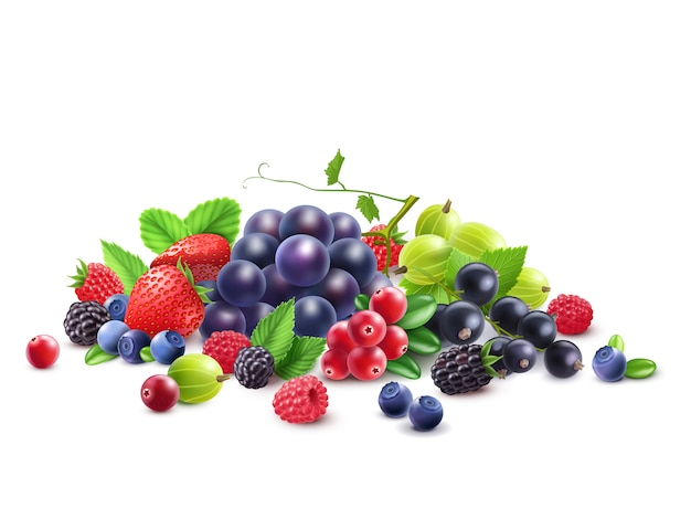 Ripe berries template Free Vector