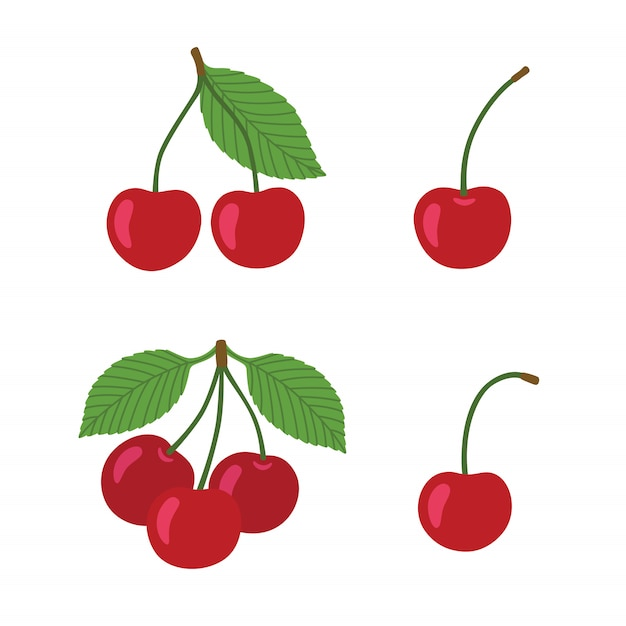 Ripe cherries on a white background. berries with stems and green leaves. Premium Vector