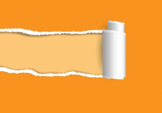 Ripped paper. Premium Vector