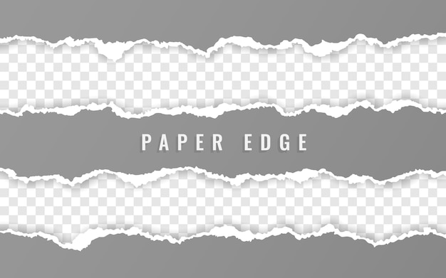 Ripped squared paper strips Premium Vector
