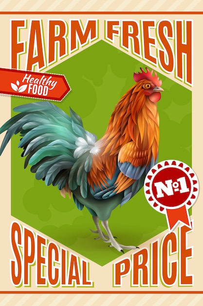 Rooster farm предложение о продаже старинных плакатов Бесплатные векторы