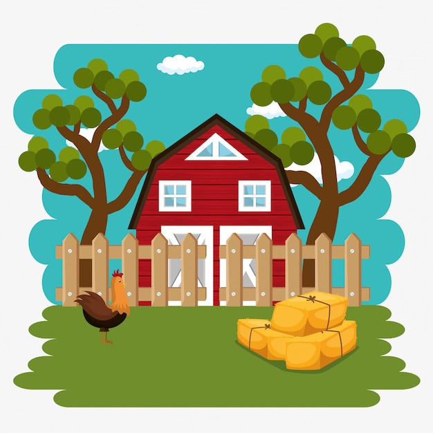 Roosters in the farm scene Free Vector