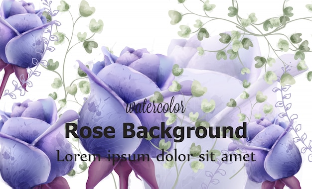 Rose flowers card background watercolor Premium Vector