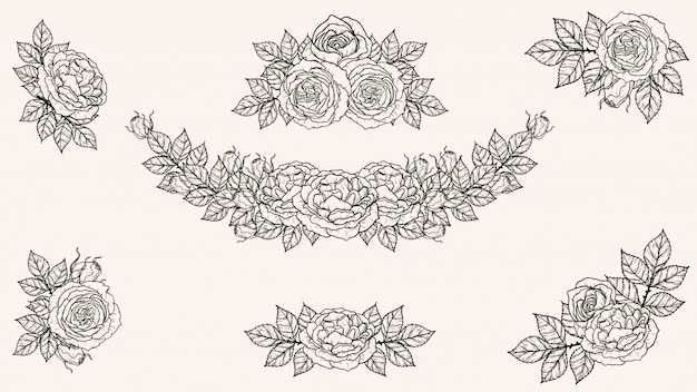 Premium Vector Rose Ornament Vector By Hand Drawing