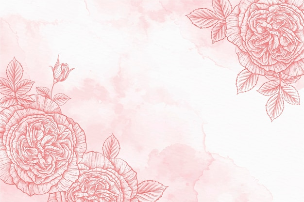 Roses powder pastel hand drawn background Free Vector