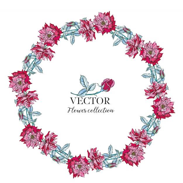 Круглая рамка из акварельных роз и ягод. иллюстрация венок из цветов. Premium векторы