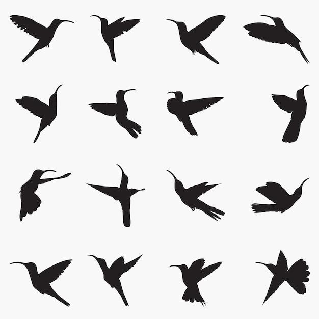 Sabrewing silhouettes illustration Premium Vector
