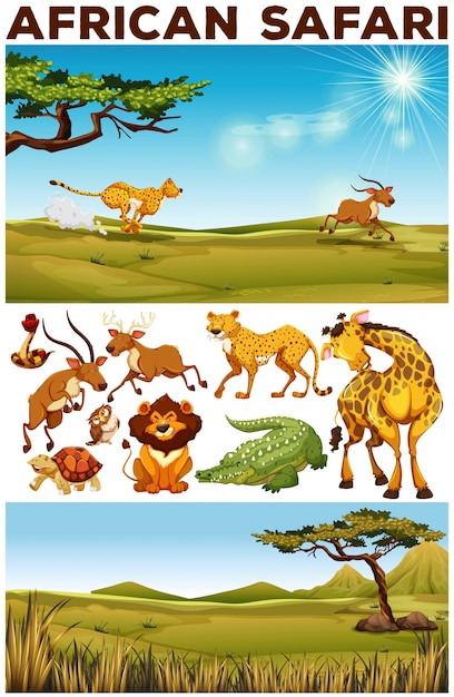 Safari theme with wild animals in the field\ illustration