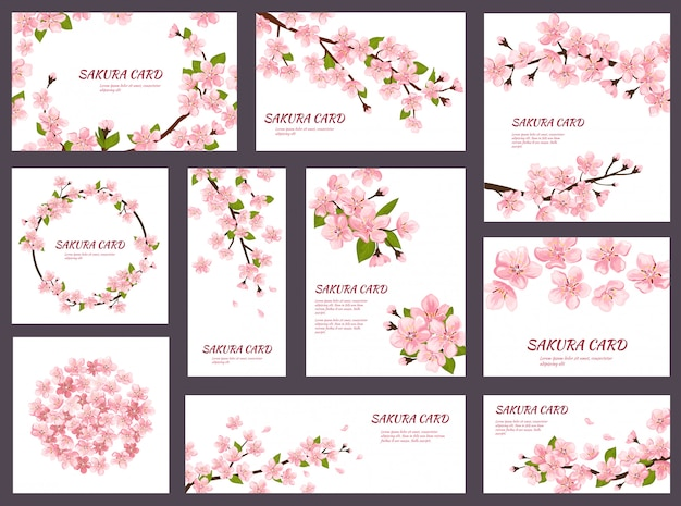 Sakura blossom cherry greeting cards with spring pink blooming flowers illustration japanese set of wedding invitation flowering template decoration isolated on white background Premium Vector