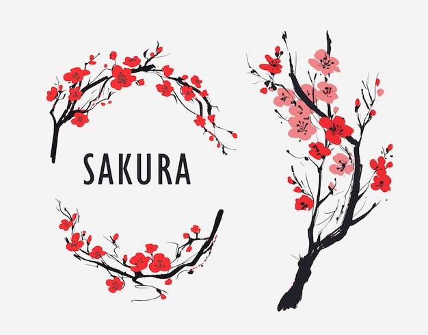 Sakura branch with flowers. vector illustration Premium Vector