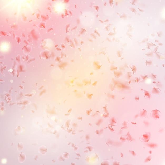 Sakura flying downwind petals on wind. Premium Vector