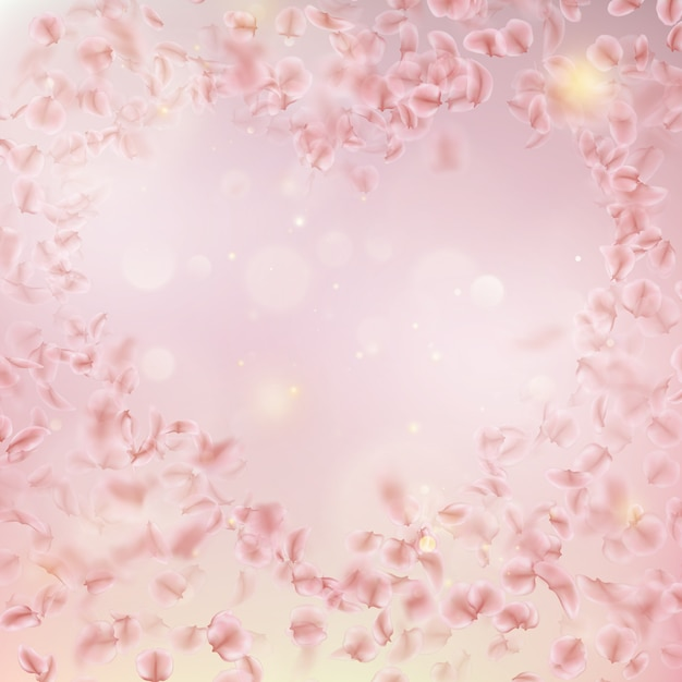 Sakura flying downwind petals on wind. Premium Vector