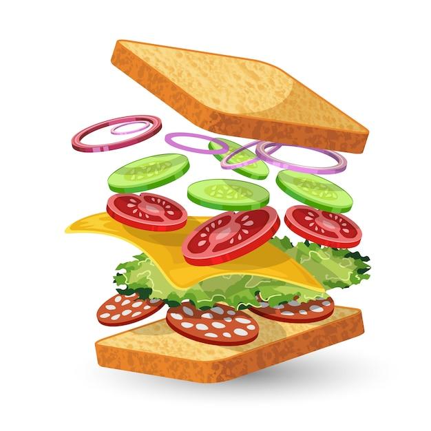 Salami sandwich ingredients Free Vector