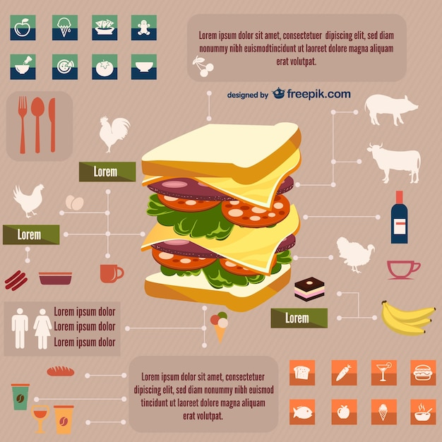 Sandwich infographic Free Vector