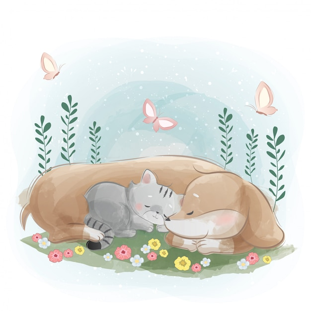 A sausage dog sleeping with the little kitten Premium Vector