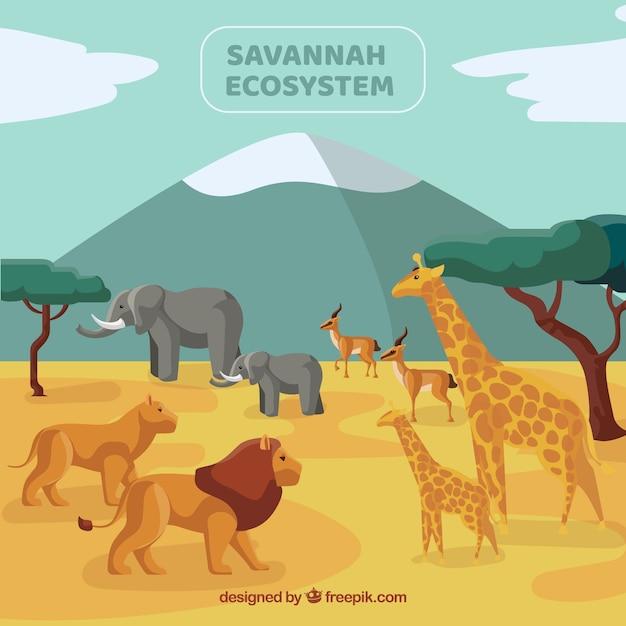 Savannah ecosystem concept with wild animals Free Vector