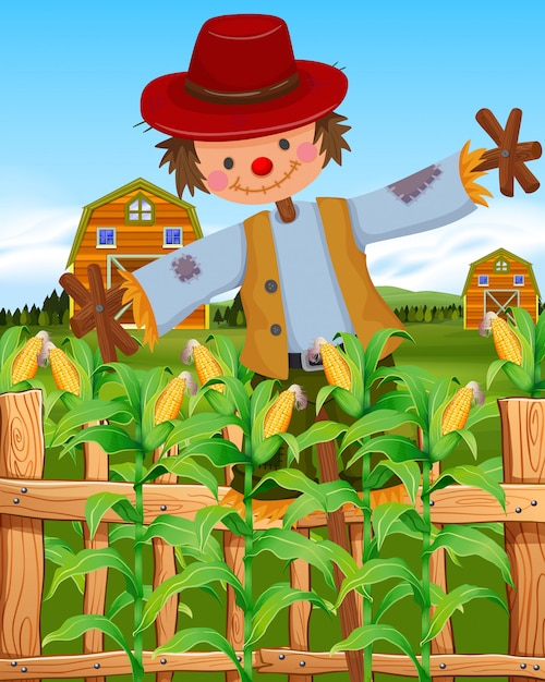 Scarecrow in the corn field Free Vector