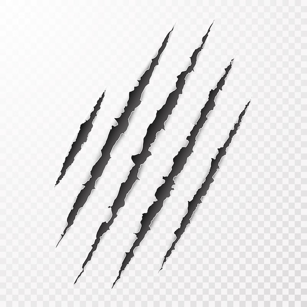 Scary leceration paper surface. wild animal claws scratch texture. torn paper edge.   illustration Premium Vector