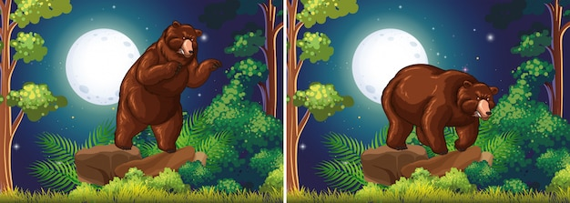 Scene background with brown bear in the forest Free Vector
