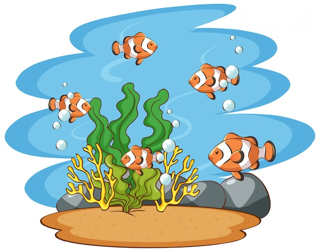 Scene with clownfish in the sea Free Vector